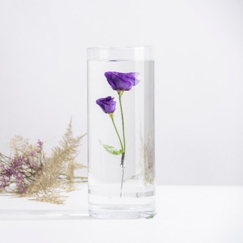 Henger alakú üveg váza, vízbe merülő virágoknak, XL
