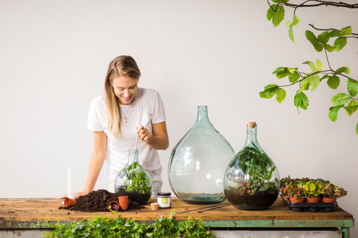 Florárium DIY szett, 3 literes