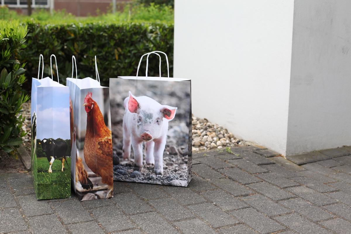 Farm állatos papírtáska 41 x 32 cm, bocis