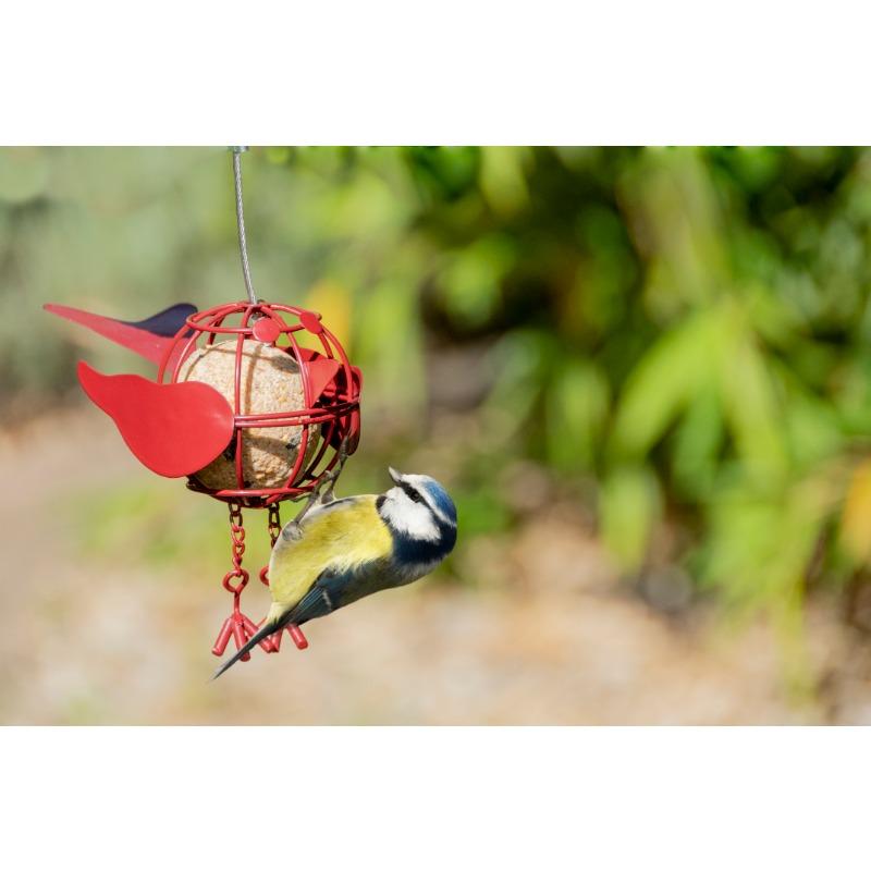 Madár alakú faggyúgolyó tartó madáretető, háromféle