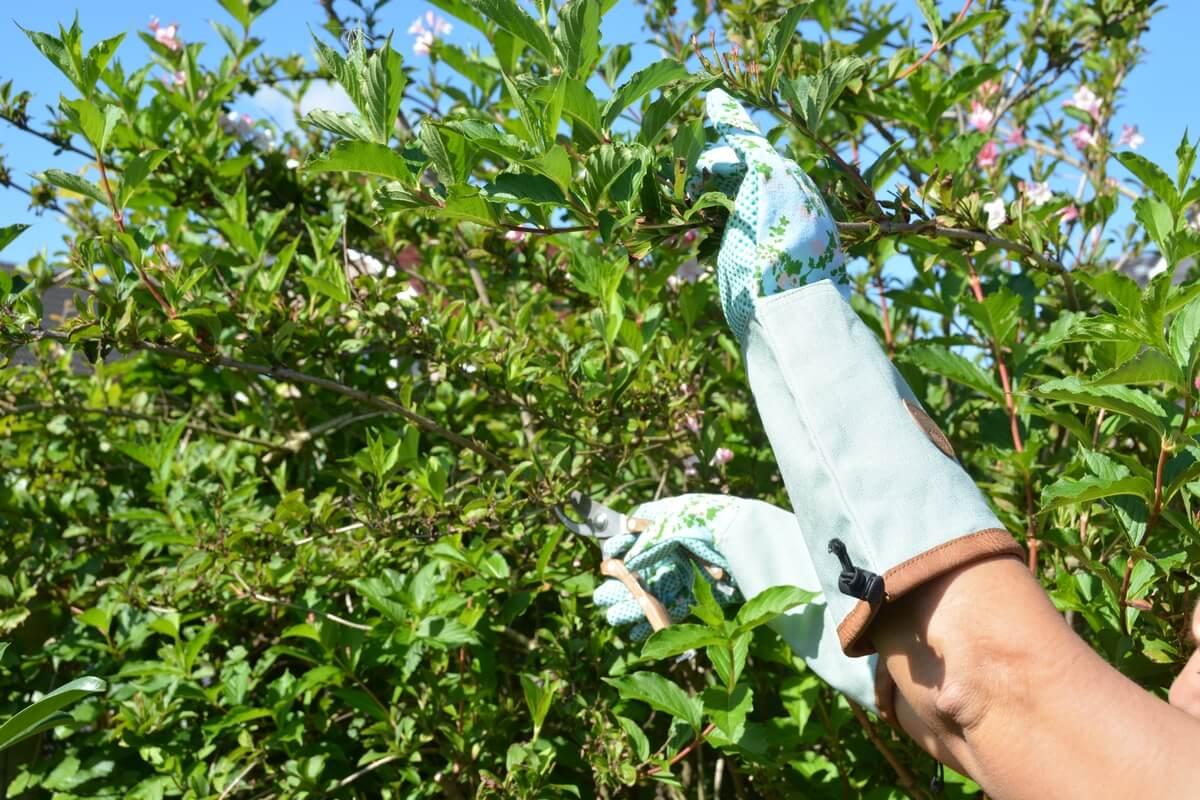 Rózsa mintás kerti kesztyű