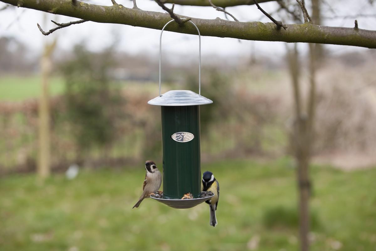 Önadagolós madáretető