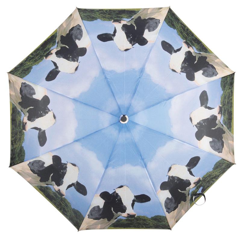 Bocis esernyő