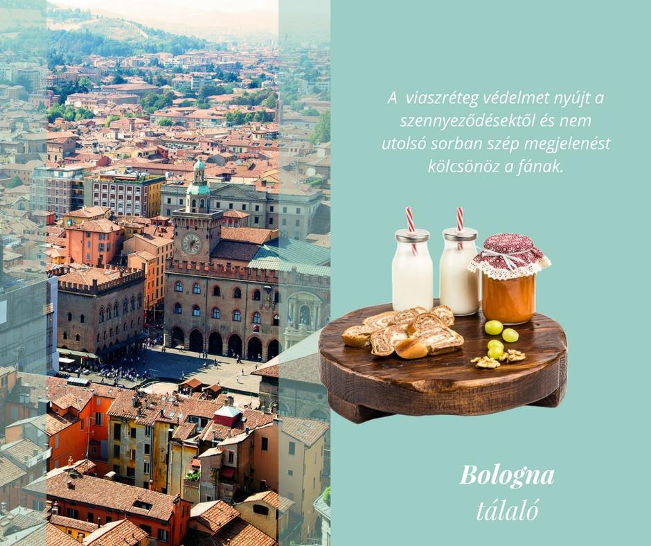 'Bologna' Tálaló