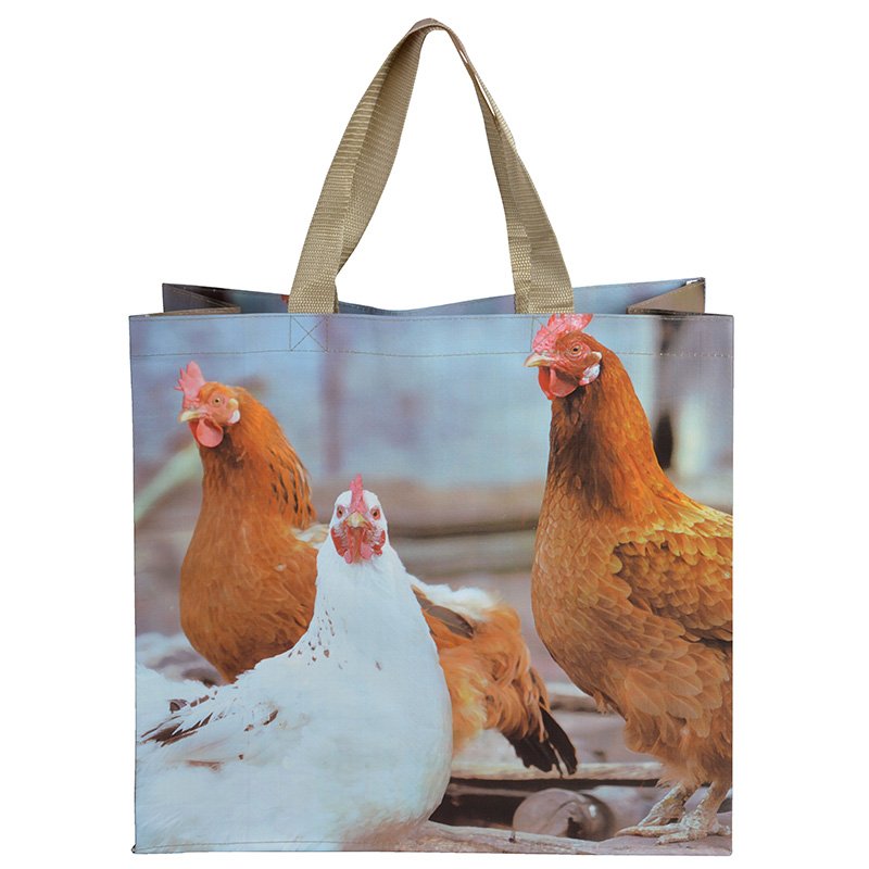 Csirkés táska