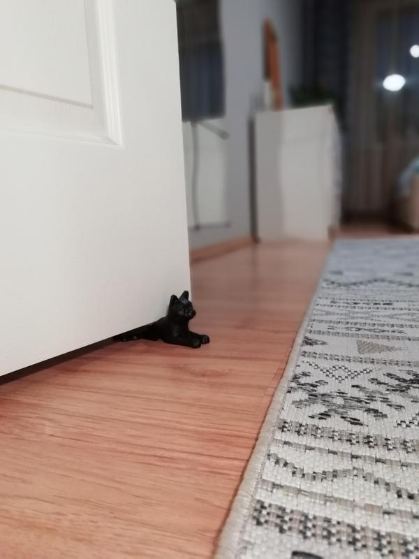 Cicás ajtóék