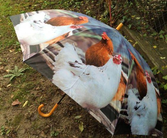 Csirkés esernyő