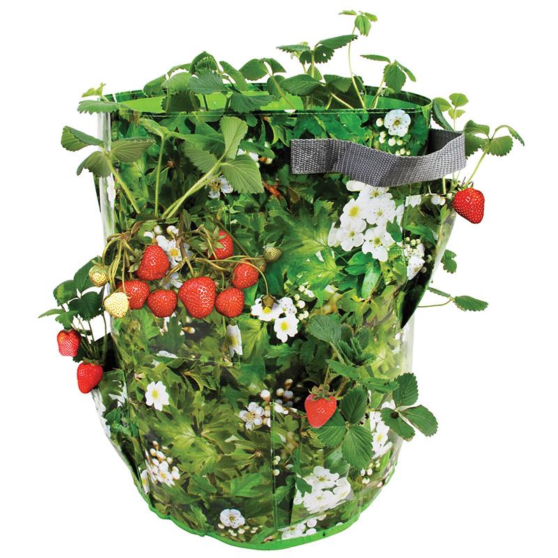Eper és gyógynövény ültető zsák