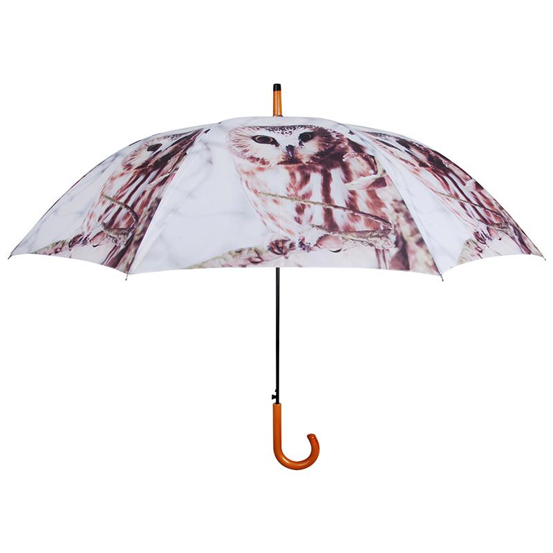 Baglyos esernyő
