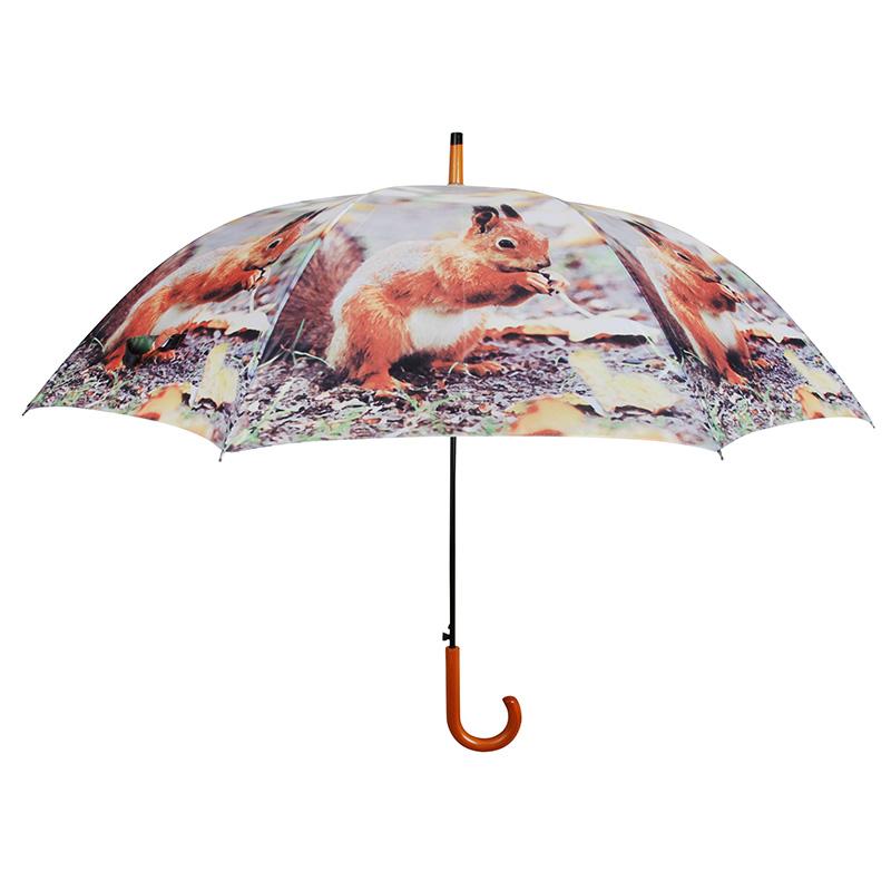 Mókusos esernyő