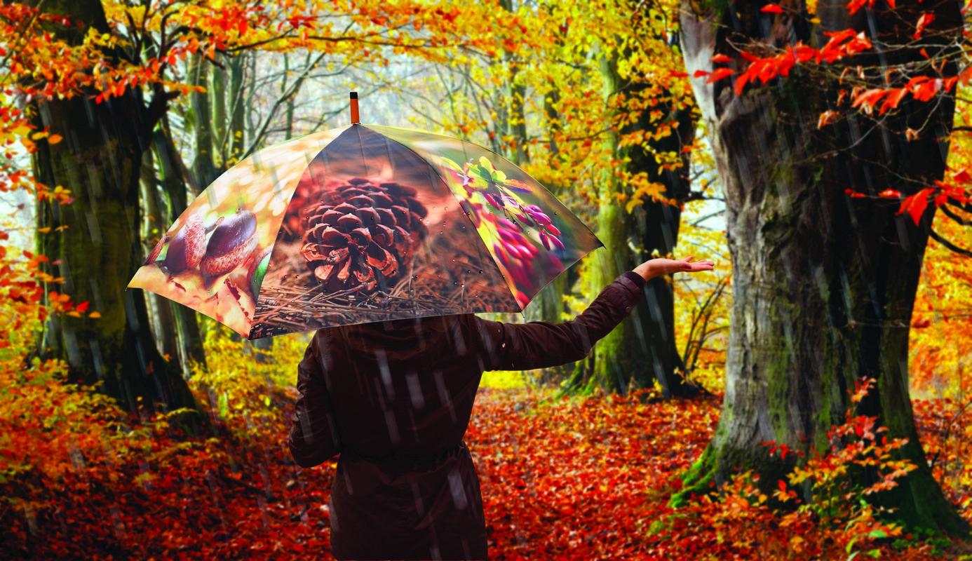 Esernyő, őszi hangulat