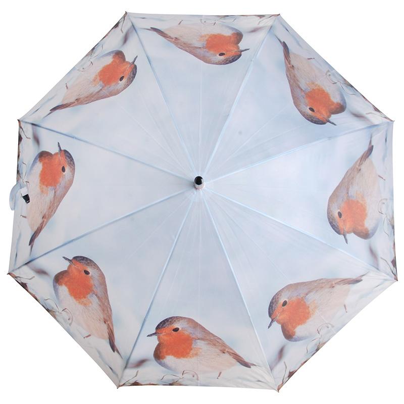 Vörösbegyes esernyő