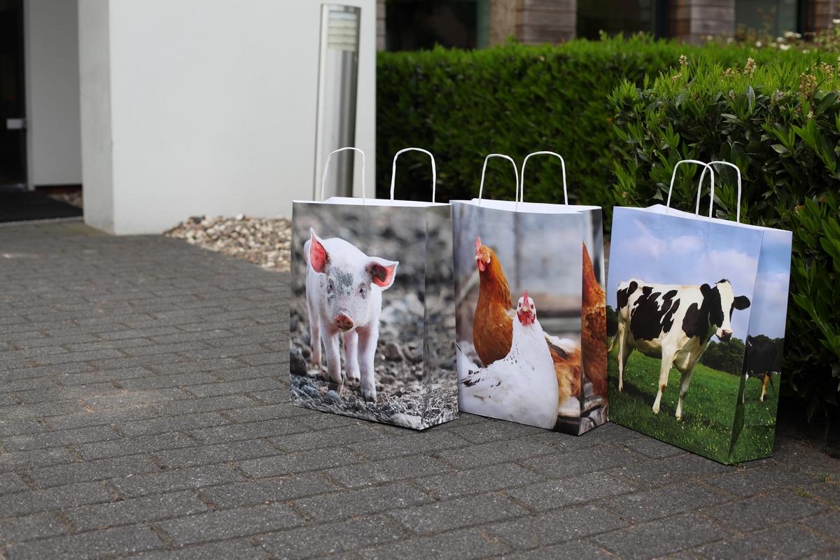Farm állatos papírtáska 41 x 32 cm