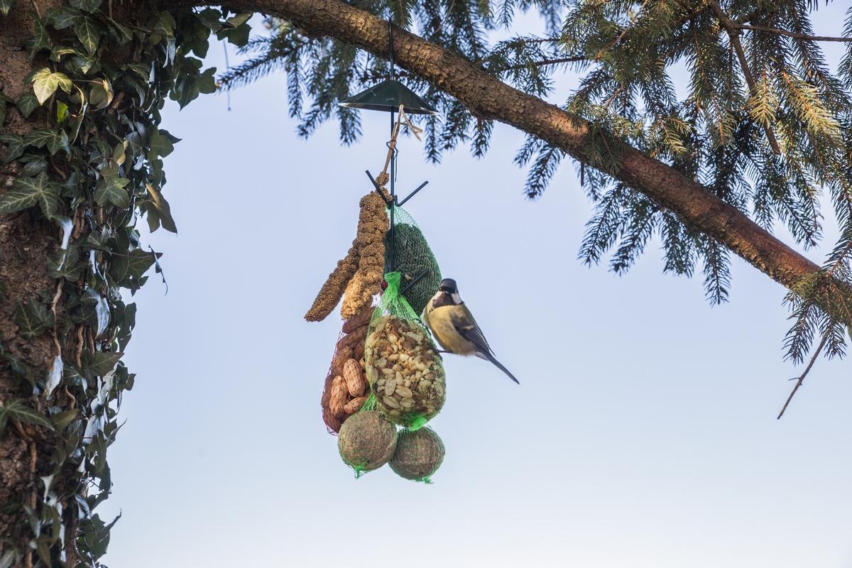 Felakasztható madáretető