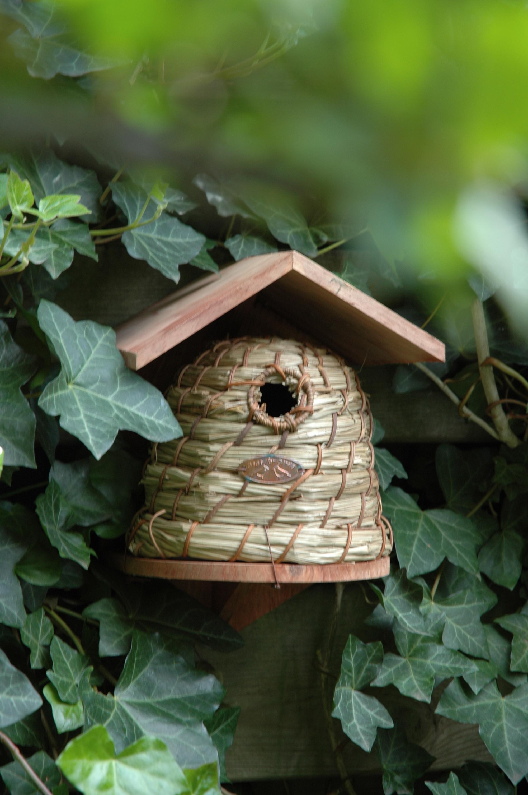 Méhkas alakú madárház