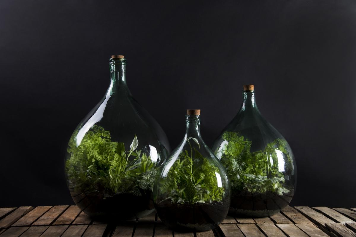 Florárium eszközökkel, 55 literes