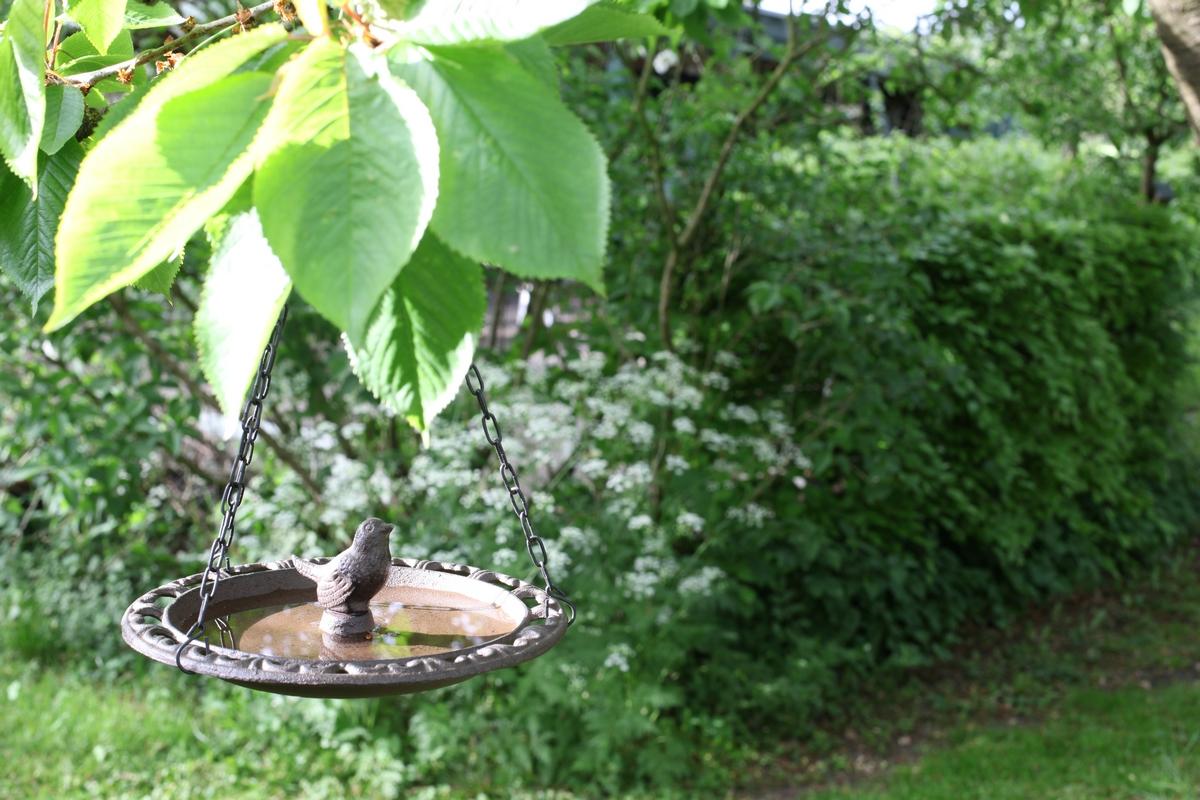 Függő madáritató