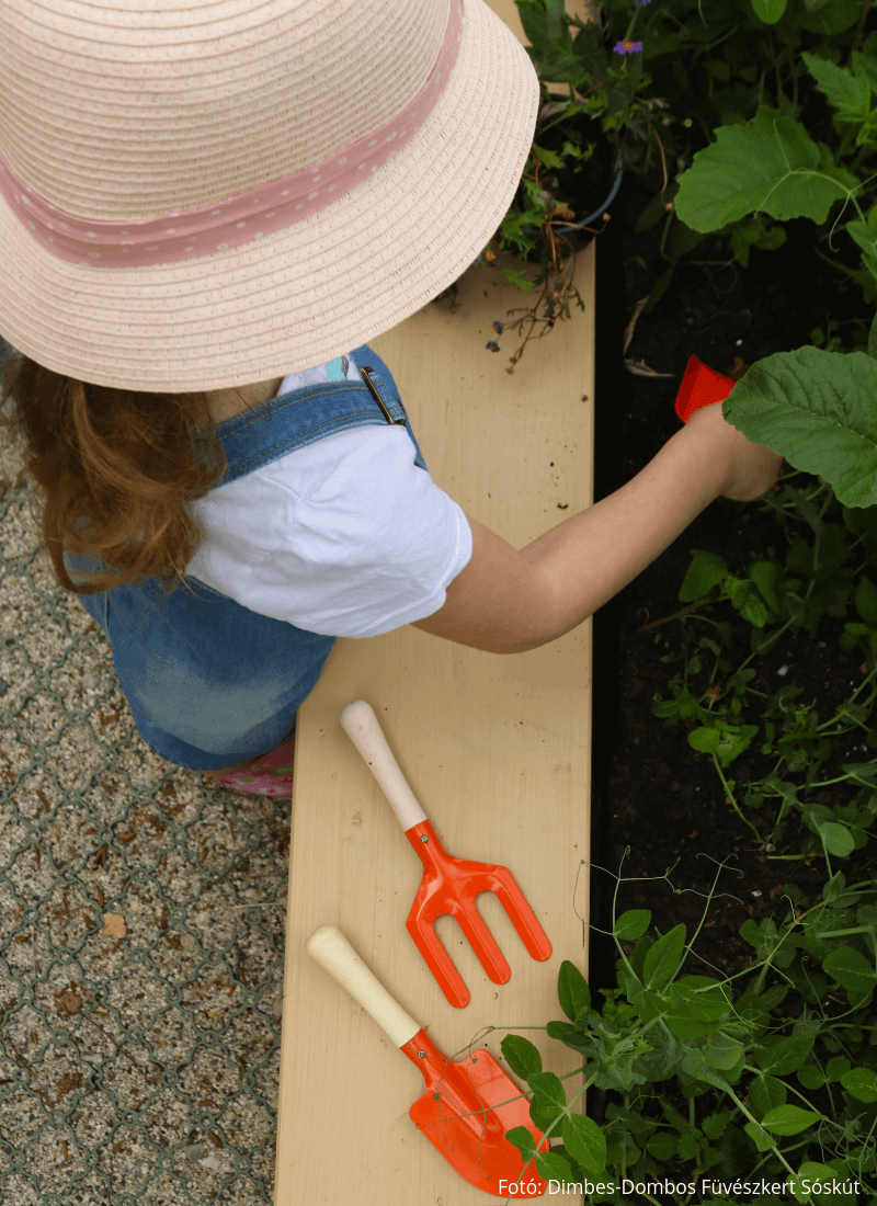 Gyerek kerti szerszám készlet 4 színben