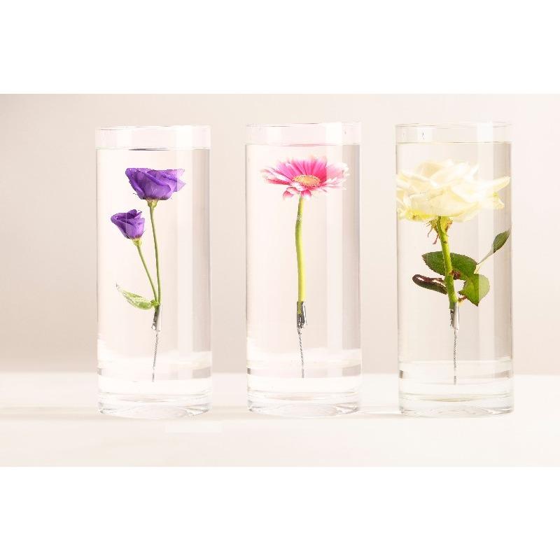 Henger alakú üveg váza, merülő virágoknak, M