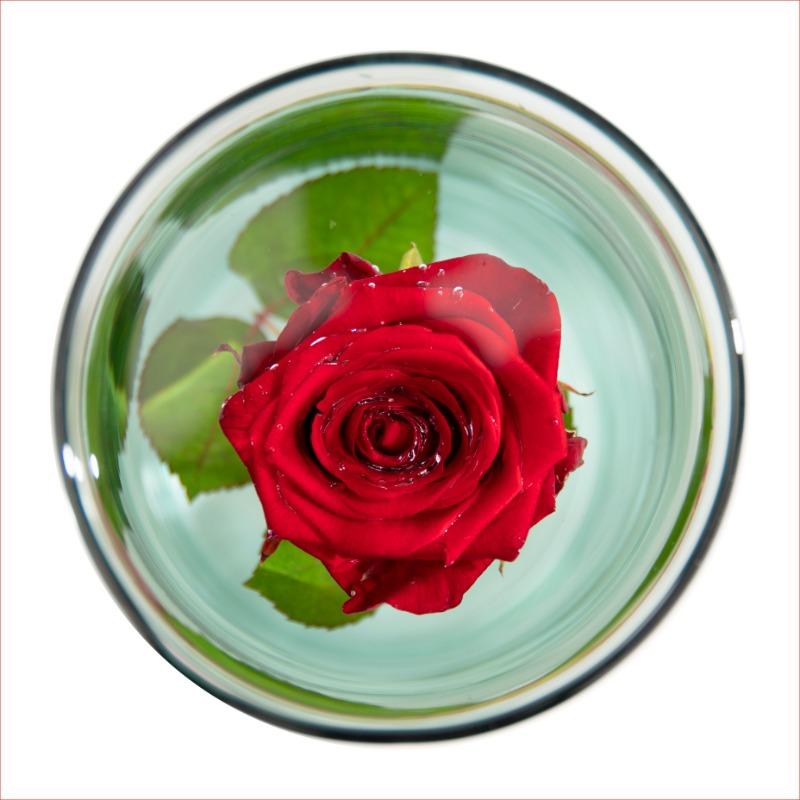 Henger alakú üveg váza, merülő virágoknak, S