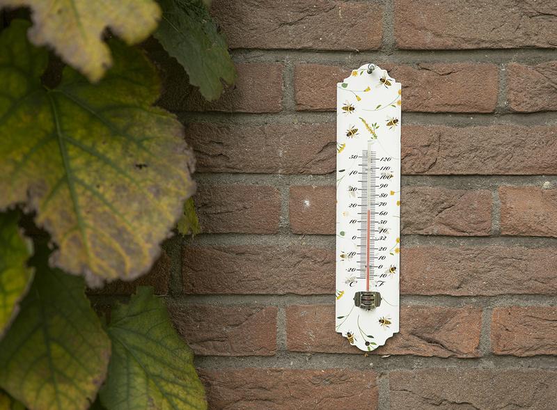 Hőmérő méhecske mintával