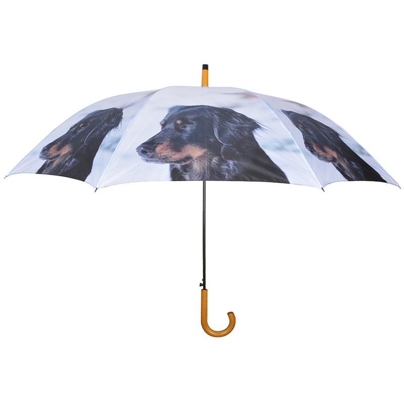 Kutyás esernyő