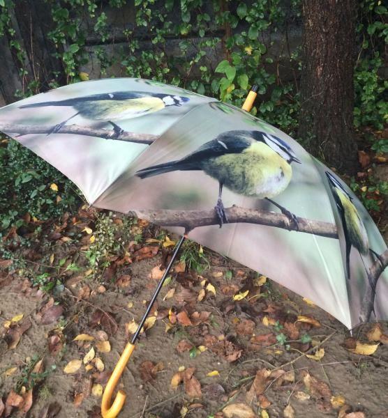 Kék cinegés esernyő