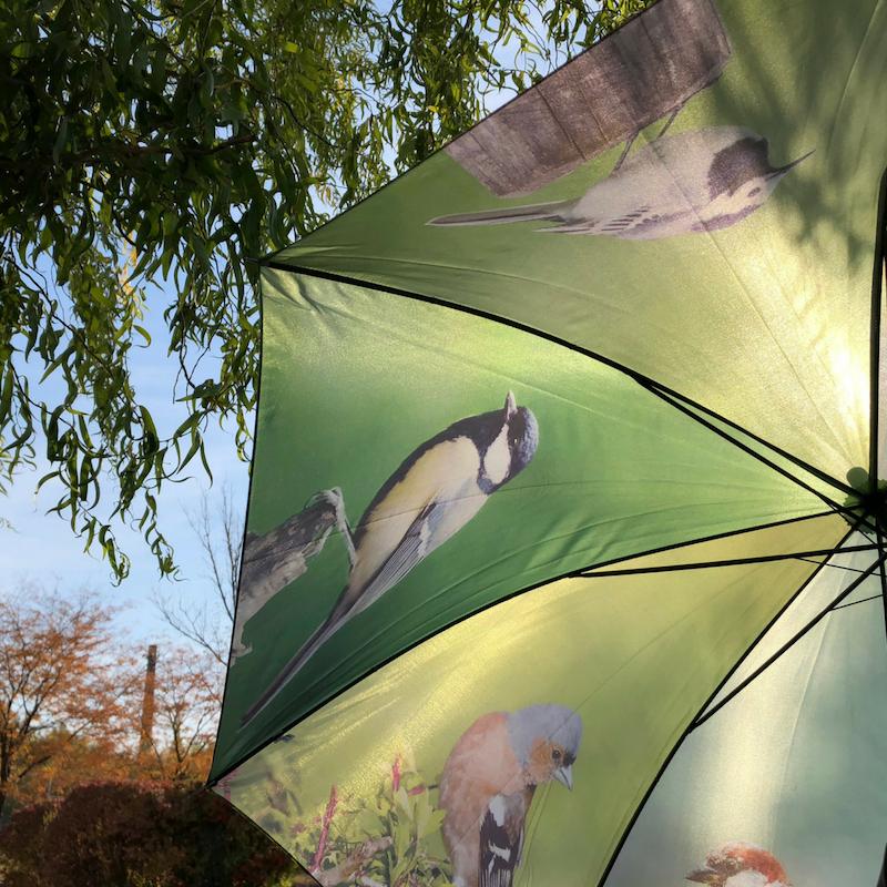 Kismadaras esernyő