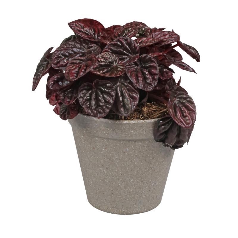 Környezetbarát virágtartó szürke színben S