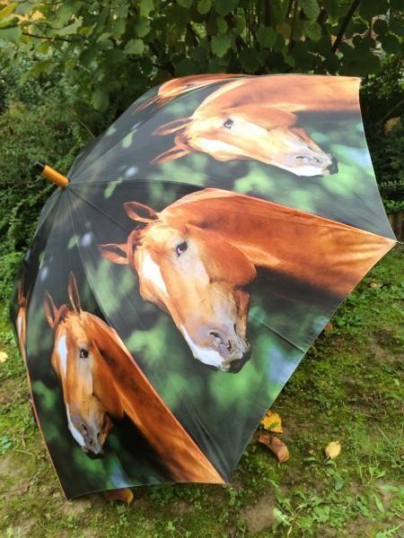 Lovas esernyő