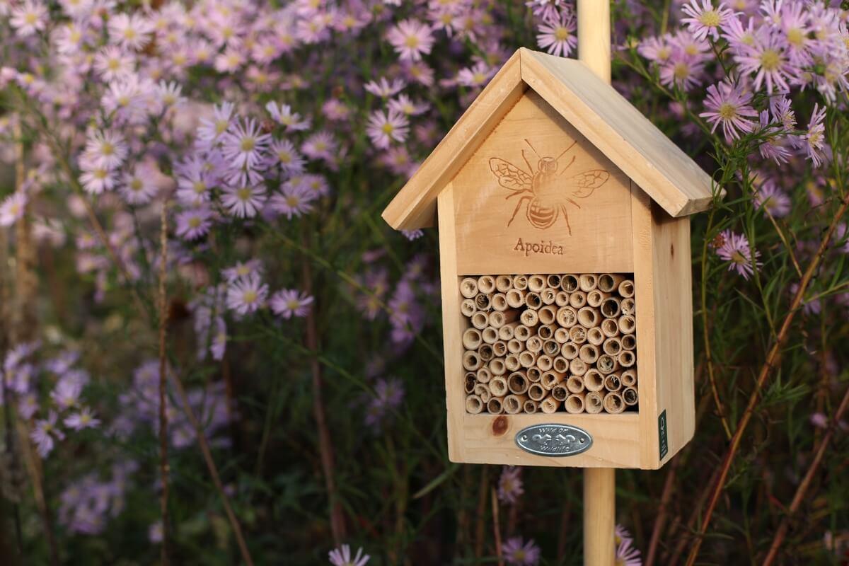 Méhecske ház méhecske mintával