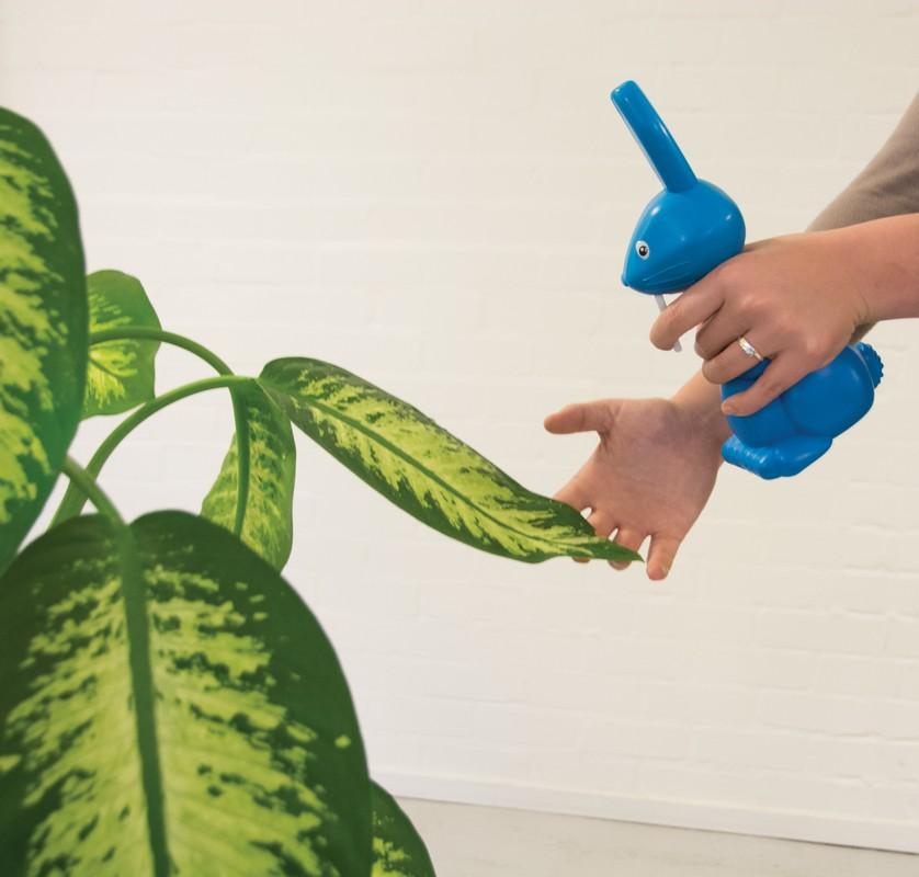 Növény permetező nyulak