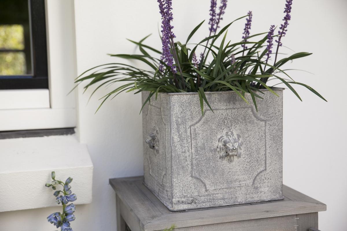 Oroszlán mintás szögletes virágtartó, kicsi