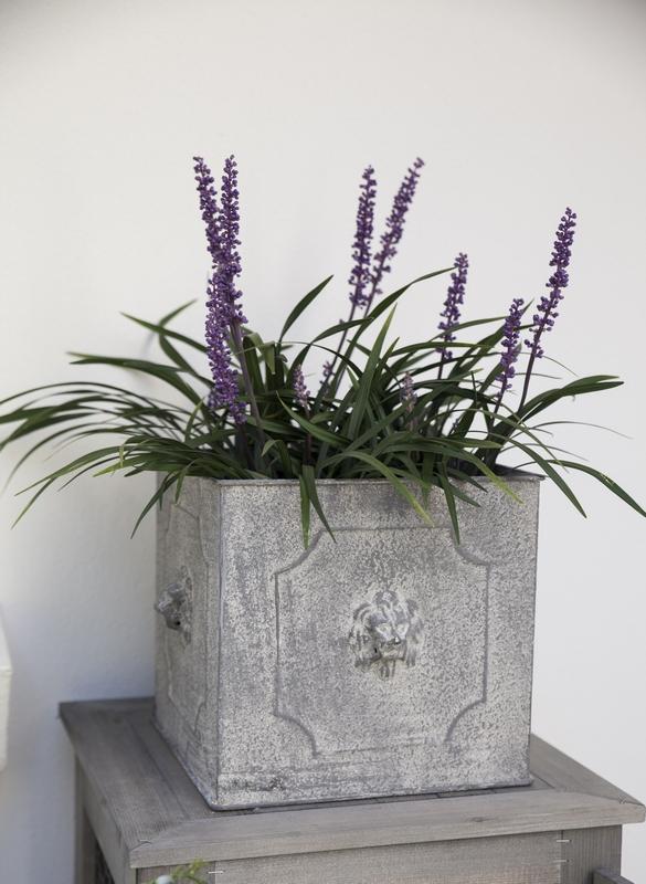 Oroszlános szögletes virágtartó, nagy