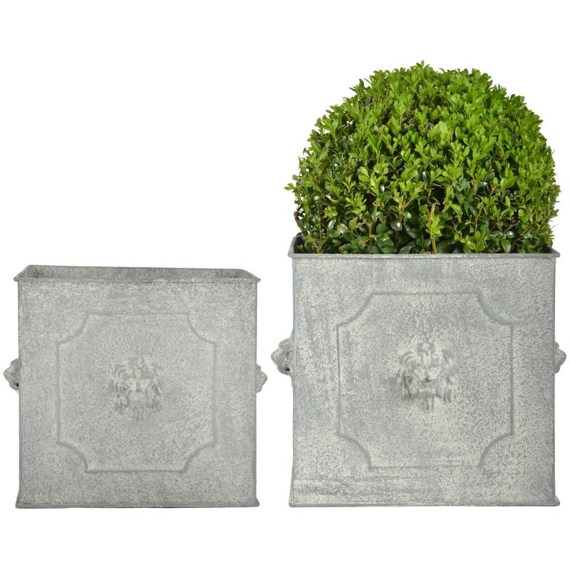 Oroszlán mintás szögletes virágtartó szett