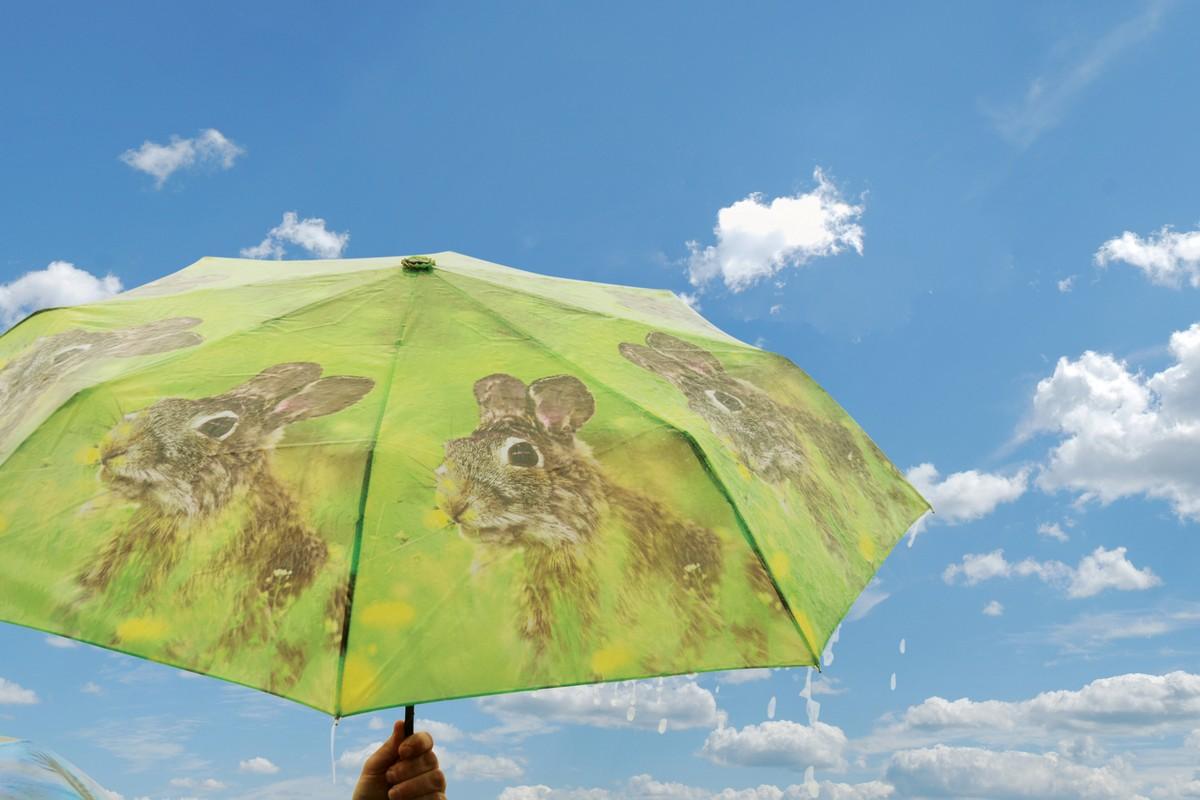 Összecsukható nyuszis esernyő