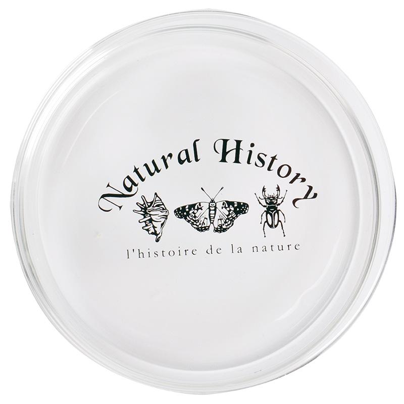Petri csésze, 120 ml