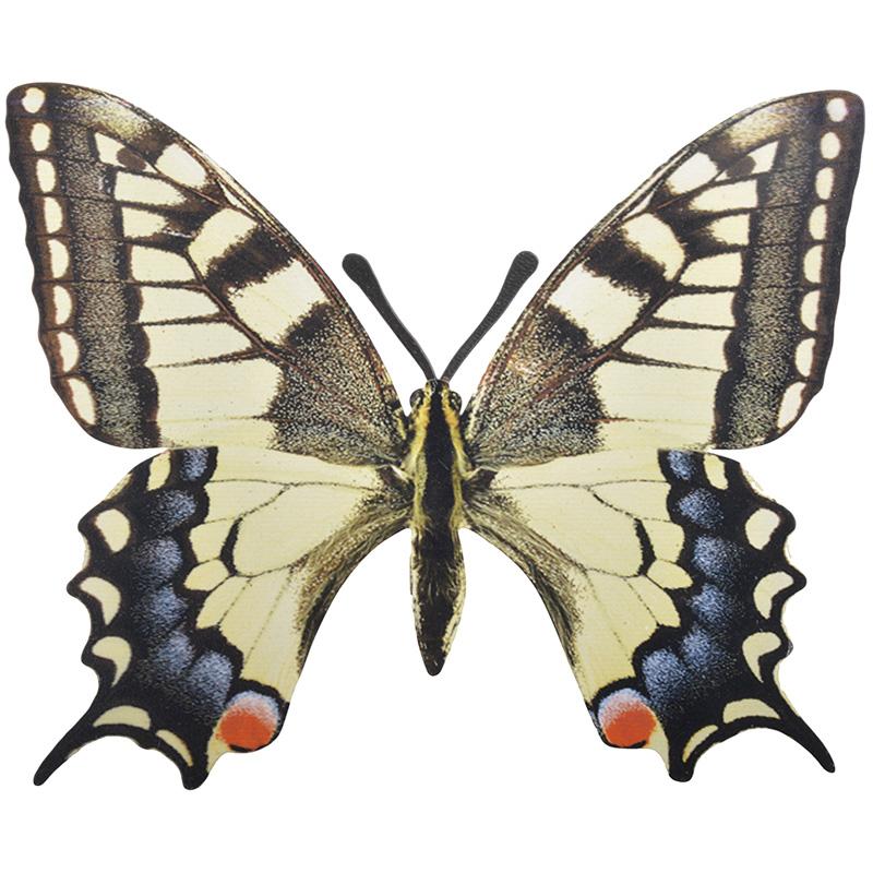 Pillangó dekoráció