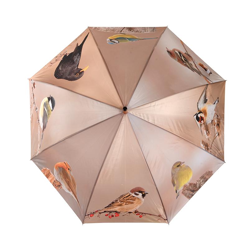 Téli kismadaras esernyő