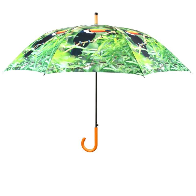 Tukán madaras esernyő