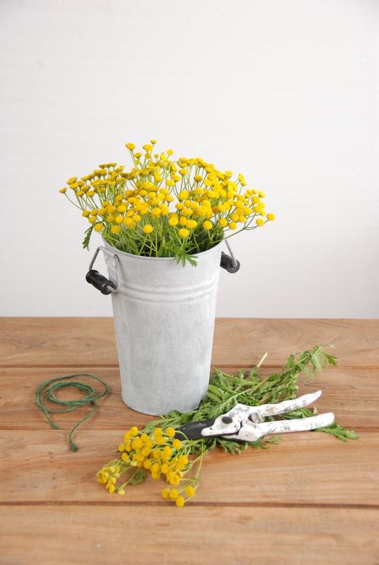 Váza, kicsi