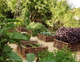 Hasznos tippek a kertben